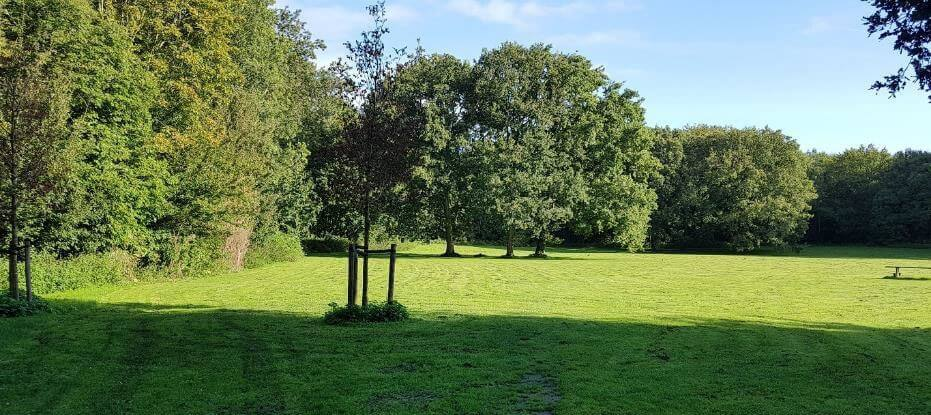 zonneweide amsterdamse bos blootgewoon nfn