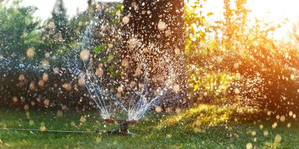 Landscape automatic garden watering system with different rotating sprinklers installed on turf. Landscape design with lawn and fruit garden irrigated with smart autonomous sprayers at sunset time.